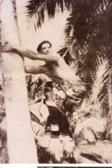 Artist Noel Wood pictured climbing a palm on his home island of Bedarra, in far-north Queensland, in 1939.