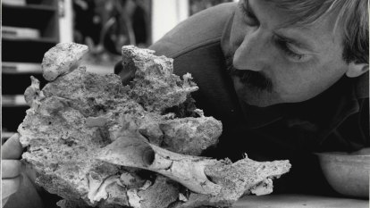 From the Archives, 1986: Zoologists announce new fossil find in Queensland
