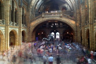 "The main hall of London's Natural History Museum, ""a jaw-dropping Romanesque pile of terracotta and stained glass""."