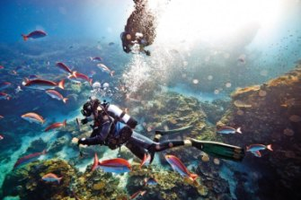 Controversy surrounding a Great Barrier Reef Foundation grant prompted a Senate inquiry.