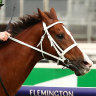 Kings Will Dream passed fit to run in Cox Plate after scare