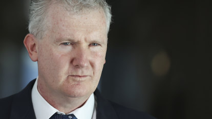 Labor's Tony Burke repays family flights eight years after holiday