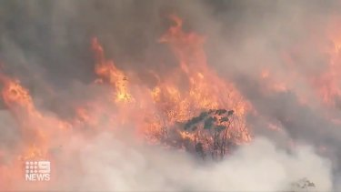 A bushfire burning in the Royal National Park on Saturday.