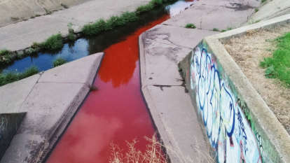 'Avoid contact with water': Poison-plagued Stony Creek turns blood red