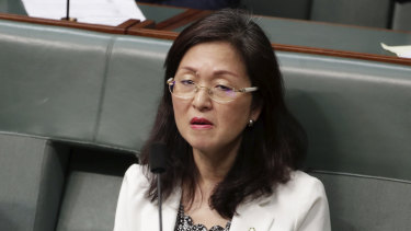 Liberal MP Gladys Liu contributed at least $100,000 to her own election campaign.