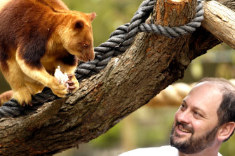 Tim Flannery with a Goodfellows Tree Kangaroo at Melbourne Zoo in November, 2002.