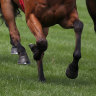Cranbourne track invaders to be banned for life