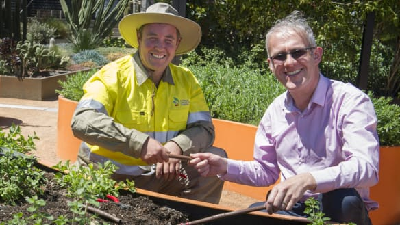 Want a glorious garden? We asked two of Canberra's greenest thumbs