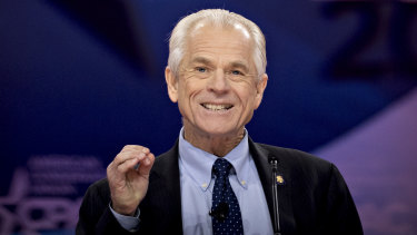 "Peter Navarro says the fictional character was a ""whimsical device"" he used in his books."