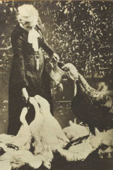 MRS. MARY GRANT ROBERTS feeding some of her flock in asection of her gardens and private zoo in Hobart