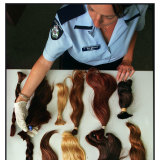 Pony tails recovered from the Carlton property.