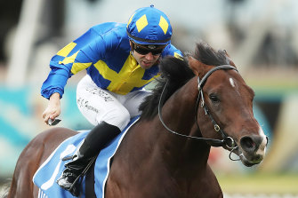 Dawn Passage was a dominant winner of the Scone Guineas at Rosehill on Saturday.