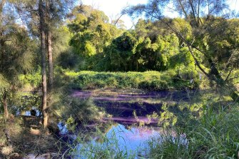 The local council says it will continue to monitor the condition of the Duck River after it turned purple.