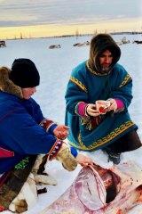 In Siberia, Sampson - a vegetarian - ate raw reindeer.