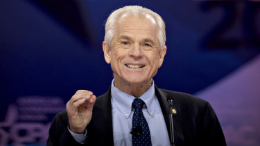 """Peter Navarro says the fictional character was a """"whimsical device"""" he used in his books."""