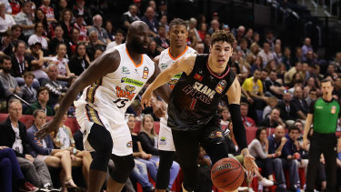 All eyes were on LaMelo Ball as the Hawks faced the Taipans.