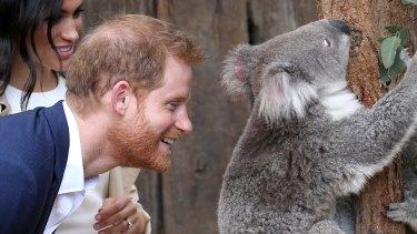 The Duke and Duchess of Sussex visit Taronga Zoo.