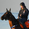 Jamie Richards on his favourite Melody Belle with perhaps his best, Te Akau Shark at the beach in Melbourne during the spring