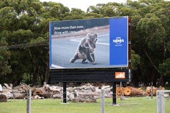 A sign in the Port Stephens region. The local koala population is under stress due to the destruction of their habitat as more people move into the region.
