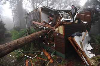 James Pickford was very lucky to escape after a large tree smashed through his Olinda bedroom, east of Melbourne, earlier this month.