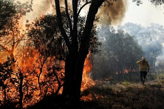 Hazard reduction burns in Sydney's north have caused poor air quality in parts of the city.