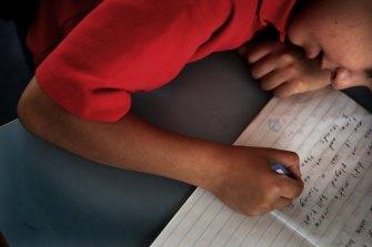 The optional test gives teachers an insight in lieu of NAPLAN.