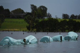 Heavy rain and flash flooding is expected along NSW's North Coast.