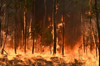 """'Hub research has shown a clear link between climate change and worsening bushfire weather conditions over the past 70 years,"""" the centre's final report finds."""