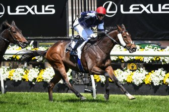 2020 Melbourne Cup winner Twilight Payment.