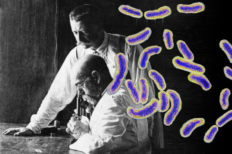 Robert Koch, seated, the founder of bacteriology and discoverer of the cholera (pictured) and tubercular bacillus with his oldest student and assistant, Richard Pfeiffer.