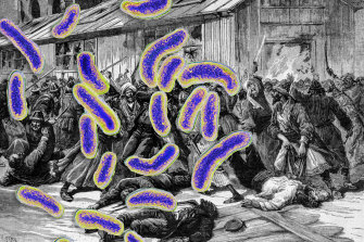 The cholera bacteria superimposed on riots over quarantine measures in Astrakhan, Russia in 1892.