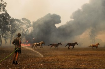 Orangeville residents defend their property as a bushfire approaches.