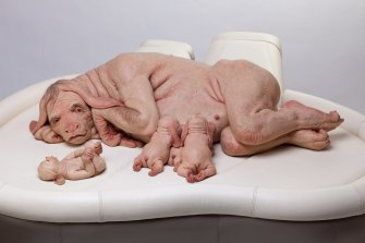 """Piccinini's """"The Young Family"""", which she produced in 2002, is about humans growing replacement organs in other creatures (size 80cm x 150cm x 110cm)"""
