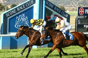 Racing returns to Scone on Monday with a strong eight-race card.