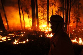 Back burning at Mallacoota on January 2.