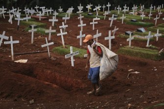 A man looks for discarded plastic near newly dug graves for those suspected of dying from COVID-19 in Jakarta, Indonesia.