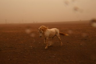 Strong winds and dust sweep through drought ravaged regions south of  Dubbo.