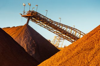 Chinese trade action against iron ore, by far Australia's biggest export, is unlikely but possible.