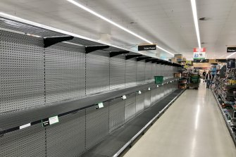 Empty toilet paper shelves at Woolworths Double Bay on Sunday.