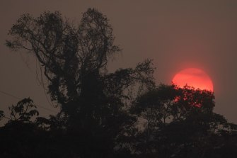 A red sun among heavy smoke caused by the fires in the Amazon forest in the state of Rondonia, Brazil, in August 2019.