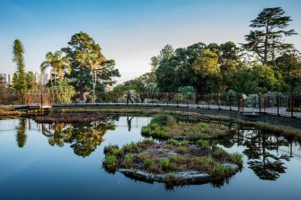 The Royal Botanic Gardens in spring's early morning light.