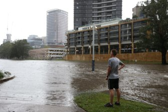 A man watches the rising Parramatta River on Saturday.