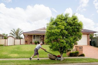Mowing, fertilising and regular watering cause green spaces to often have a similar mix of microbes just beneath the soil in different parts of the world.
