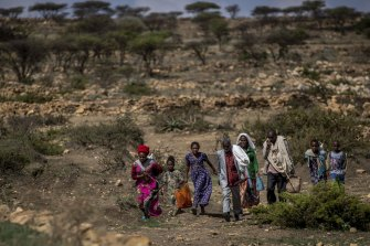 People walk from a rural area to a charity food distribution point near the town of Agula, in the Tigray region of northern Ethiopia, last month.