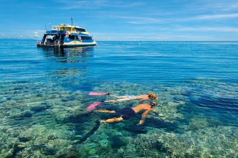 Recent border closures and COVID outbreaks are slashing reef visitor numbers from New South Wales and Victoria, in addition to international tourists.