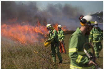 A controlled burn at the back of Point Cook.