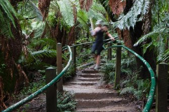 The 1000 Steps in the Dandenongs are closed today.