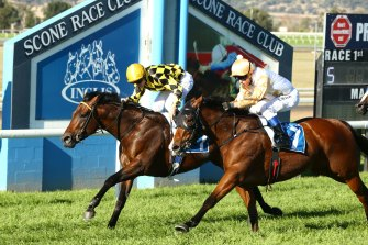 Racing returns to the equine capital of Australia on Tuesday with an eight-race card.