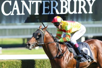 Racing returns to Canterbury on Friday evening with an eight-race card.