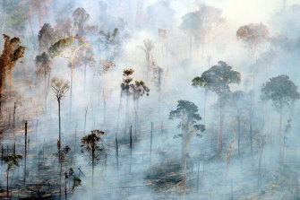 Deforestation in parts of the Amazon has contributed to Brazil's shrinking rainfall.